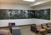 Albany Hospital